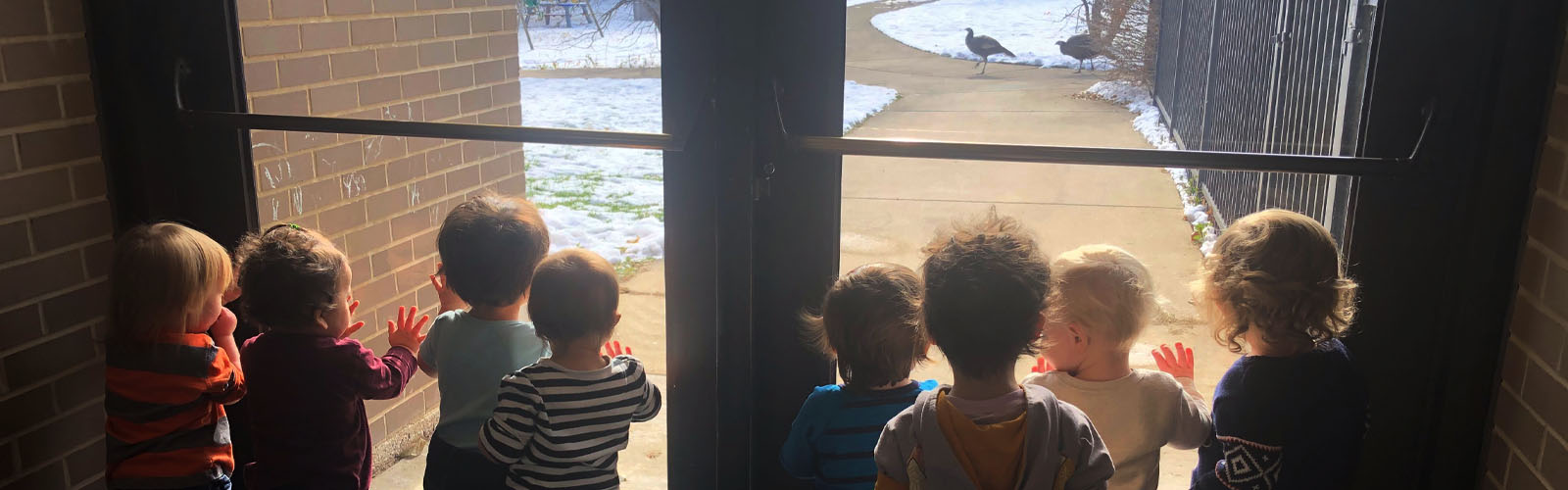 group of children looking outside at the turkeys